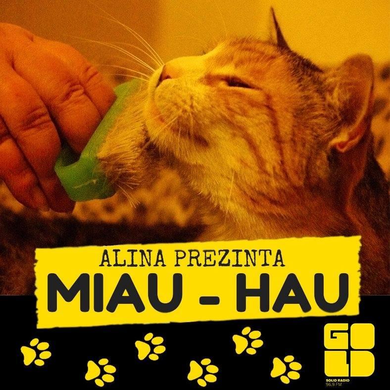 MIAU – HAU si Alina lui. Sau ei.