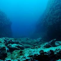 Virus bizar, descoperit sub fundul oceanului